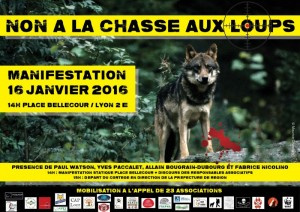Manifestation-lyon-defense-loup